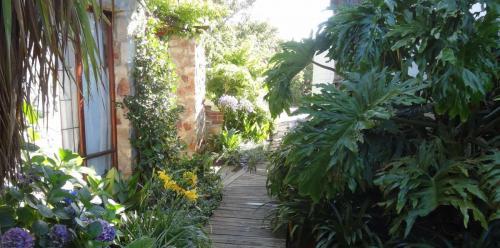 Garden 3-min