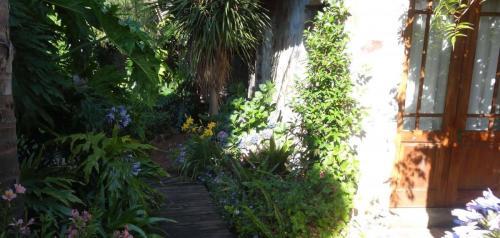 Garden 4-min
