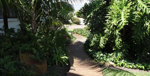 Garden 7-min